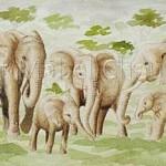 Elephants-closeup-Copyright-Mabel-Cheung-Harris