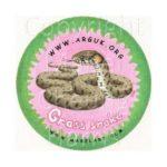 grass-snake-sticker