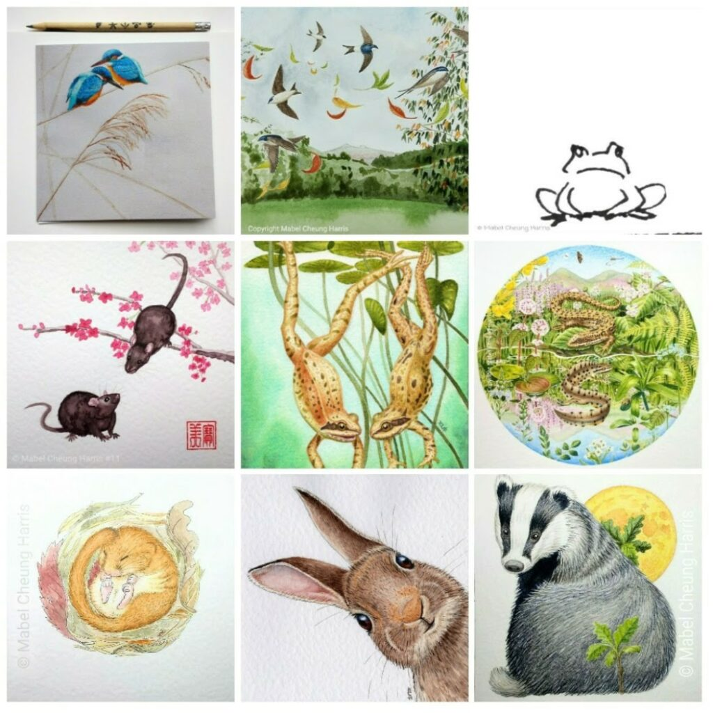 Collage: Kingfisher pair; house martins and leaves flying; frog pen drawing; rat pair and blossom Chinese watercolour style; frog pair diving; common lizard, smooth newt and common lizard tadpole with pool and hills; sleeping dormouse; rabbit head; badger and moon.